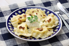 pierogi-dumplings-polish-food-homemade-isolated-whte-background-51873963