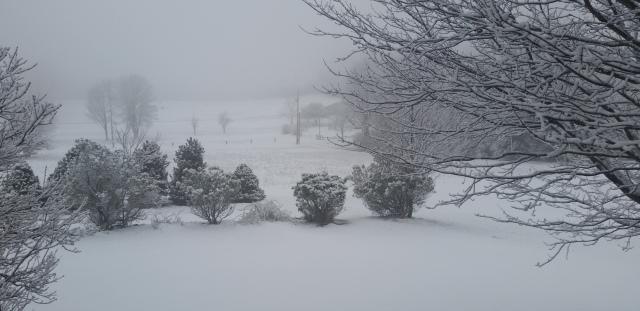 winter scene 3-19-17